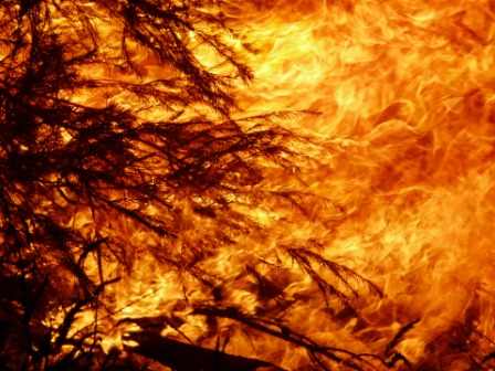Act Now – Bushfire Season is here