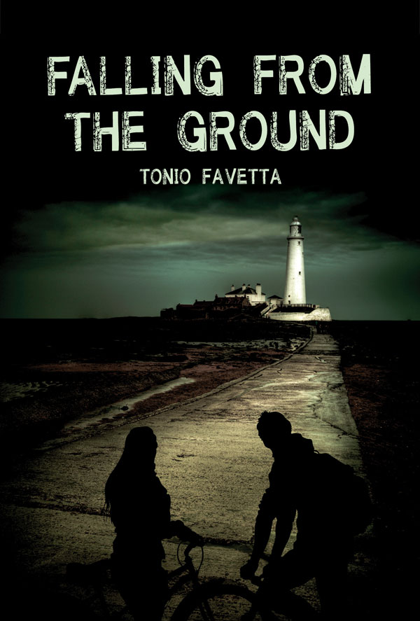 falling from the ground book cover