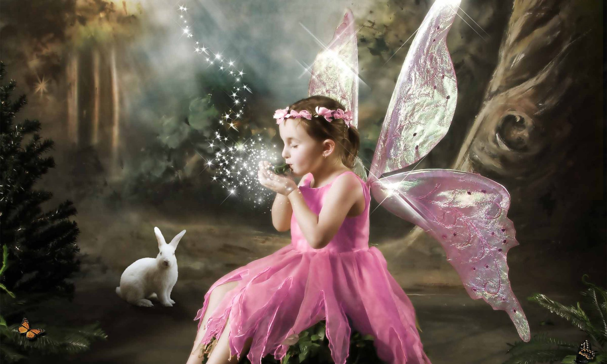 AEV Fairies Photo Art