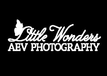 AEV Fairies Photo Art