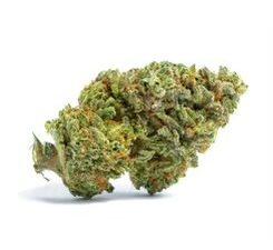 indoor cannabis