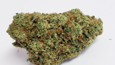 Alien OG -Best weed in OC, Dispensary near me, Indoor cannabis, Best cannabis delivery in orange county