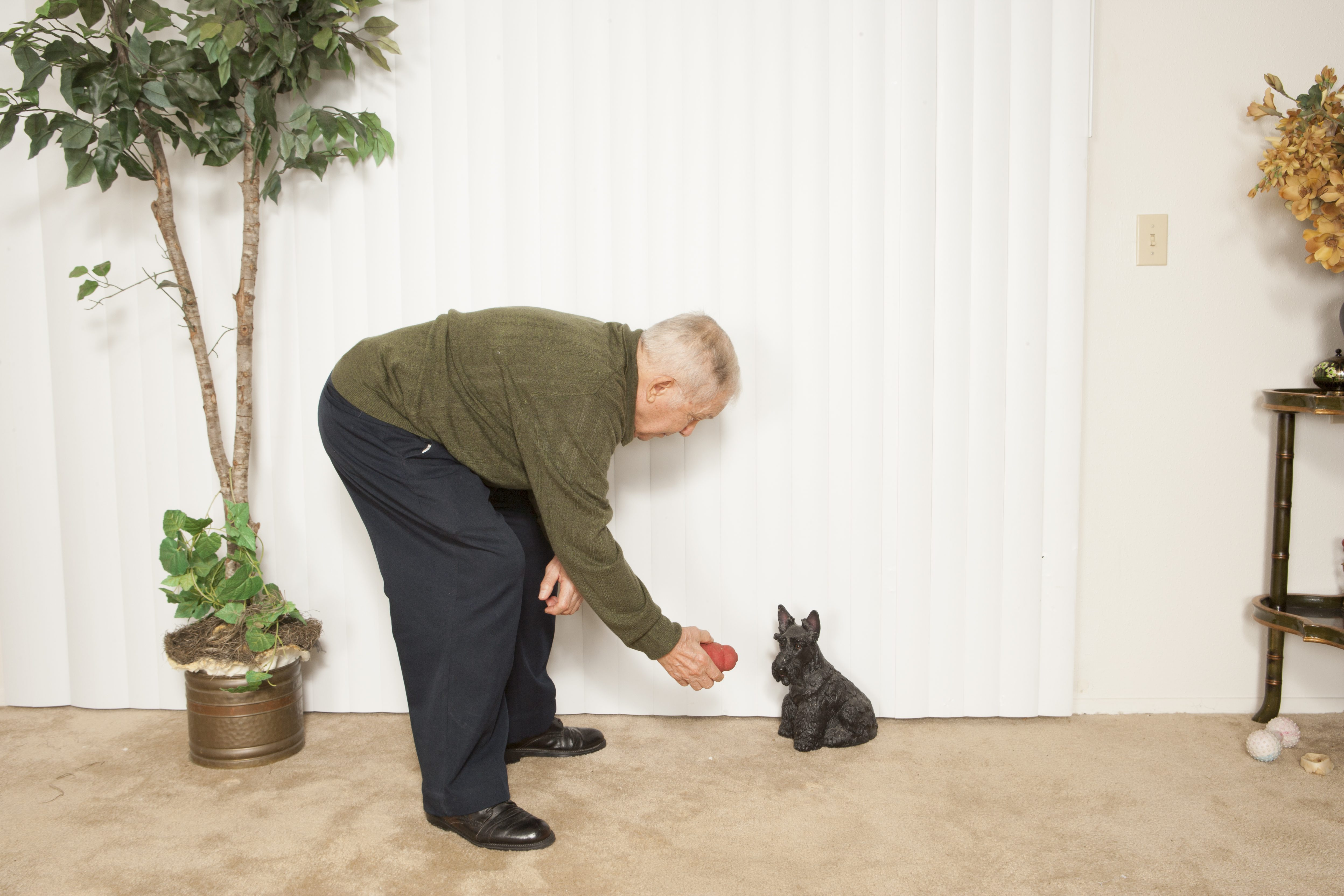 Senior man instructing pet
