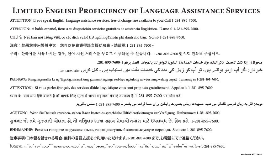 Limited english proficiency of language assistance services