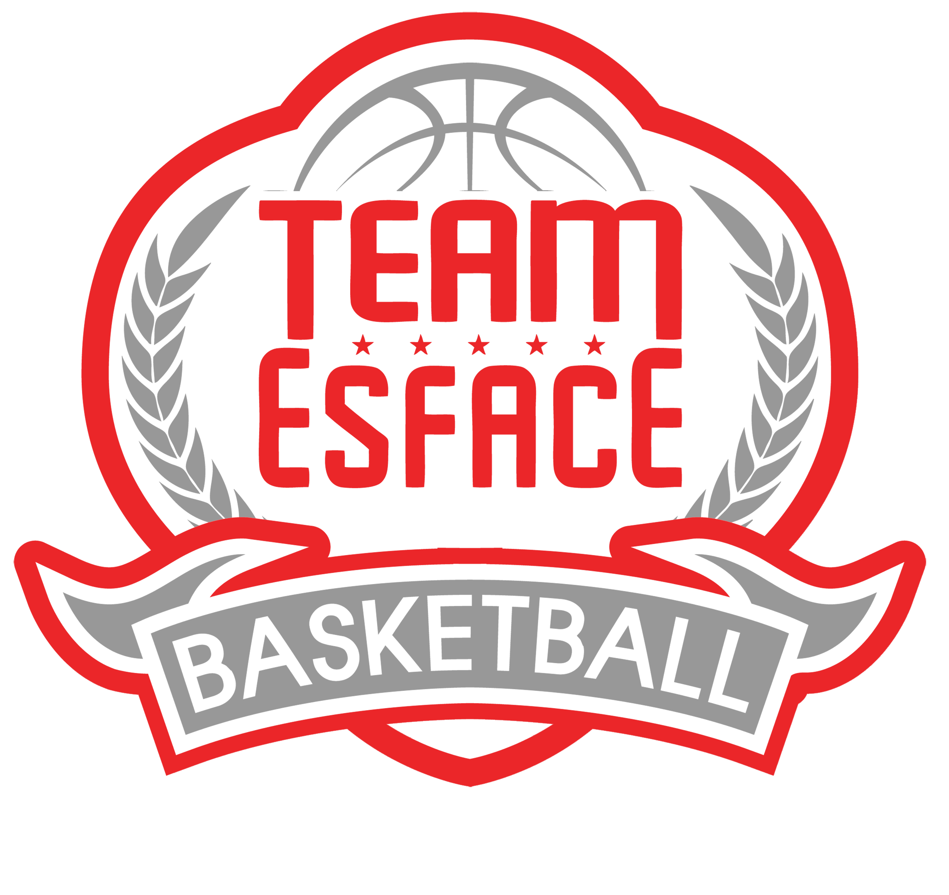 TEAM ESFACE NPO logo tri color white outline