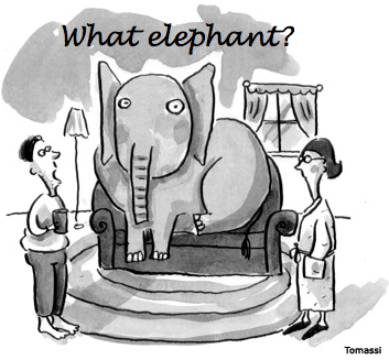 The proverbial elephant in the room