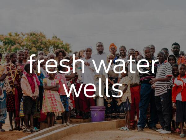 <span>Fresh Water Wells</span><i>→</i>