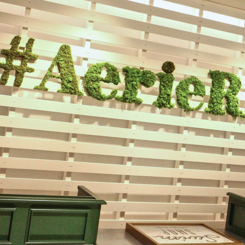 Aerie Retail Shop-Electrical Design