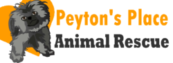 Peyton's Place Animal Rescue