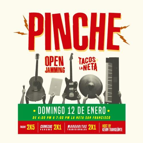 PINCHE-500x500