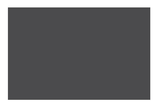 Larry Fenix Films – Creative Services – Custom Screenprinting | Design | Photography | Video Production Logo