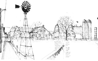 7.3 Windmills and deciduous trees and on Amish farms