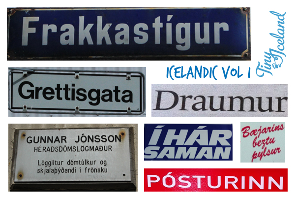 Learn Icelandic VOL I with Tiny Iceland