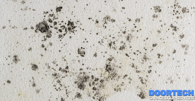 Protecting Your Garage Door From Mold and Mildew