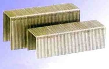 Collated Staples<br />304 Stainless Steel