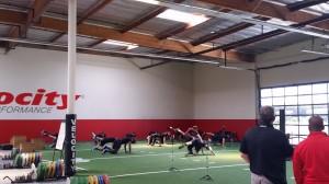 Collegiate athletes go through stretch-warm-up - Los Angeles, California 2