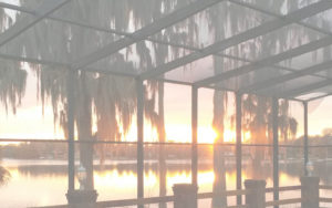 Tampa Bay Pool Screen Repairs