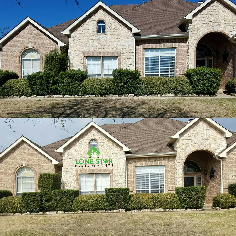 shrub trimming lavon texas