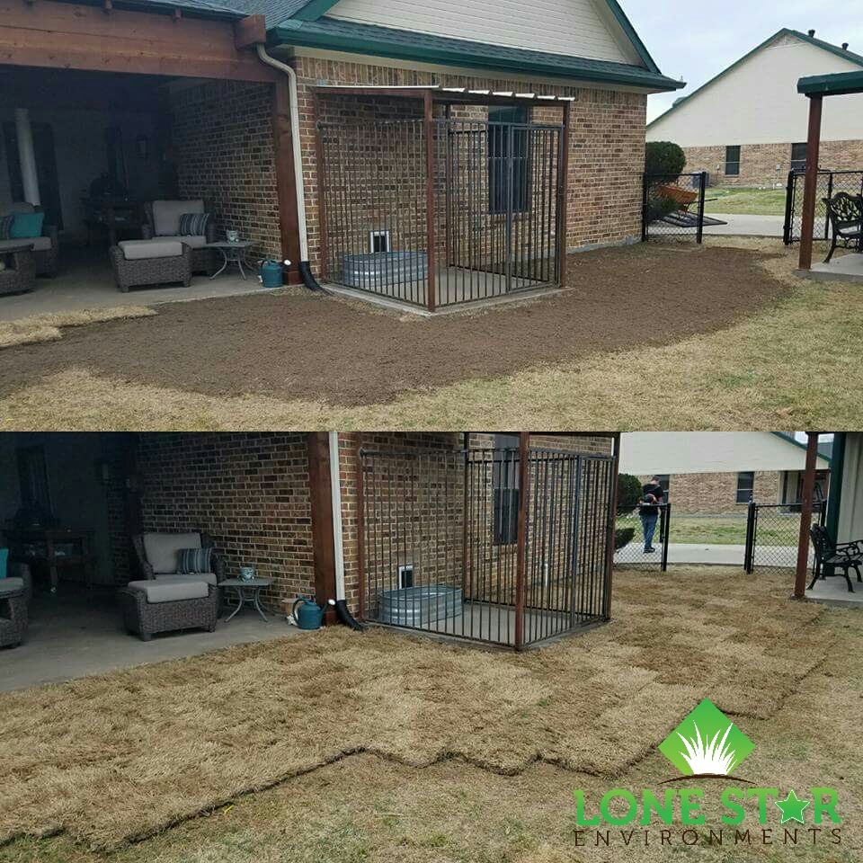 sod installation caddo mills texas