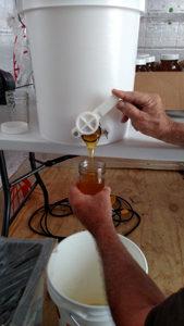 Honey Packing Owls Landing Farm
