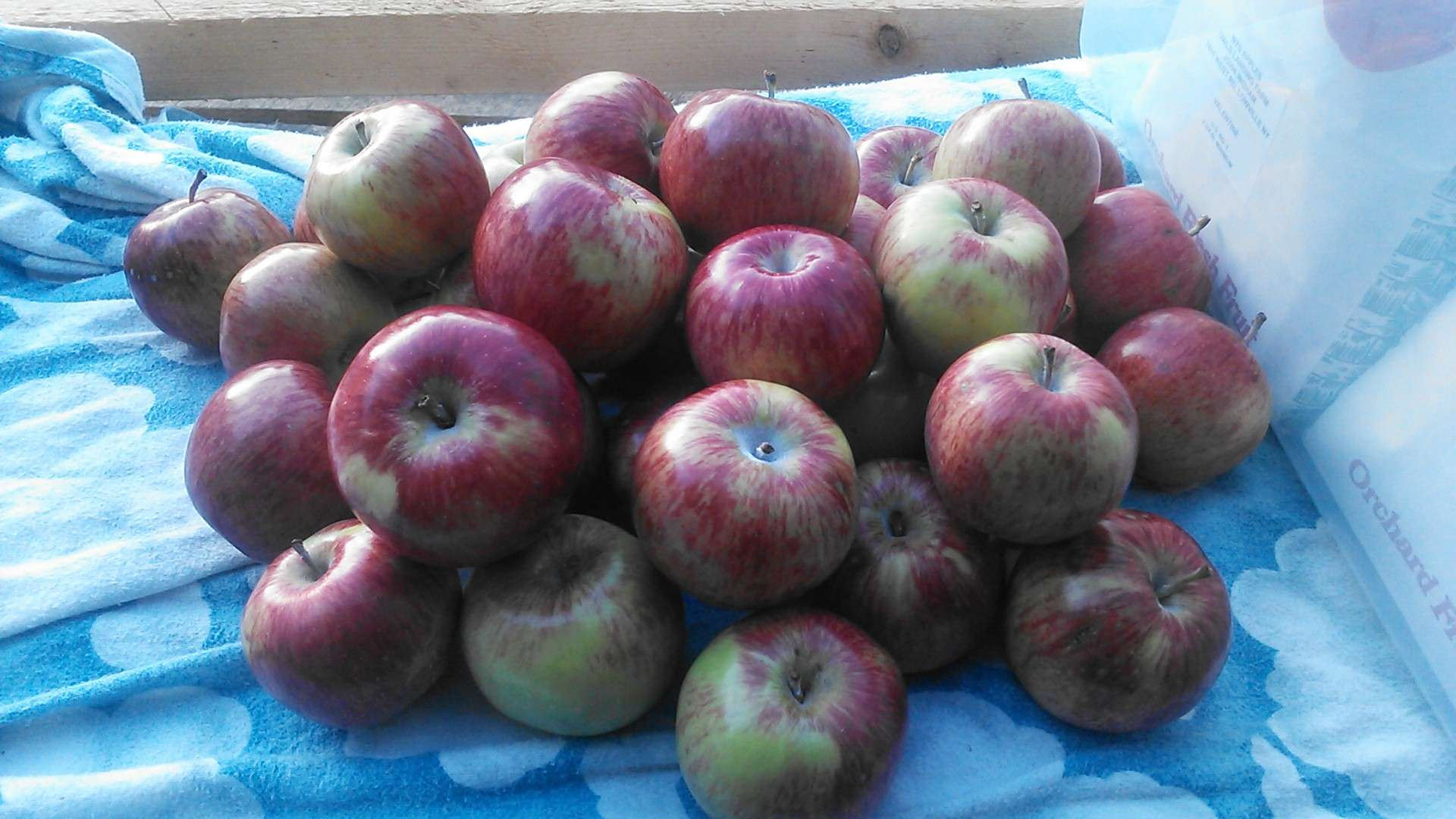 Owls Landing Farm Apples