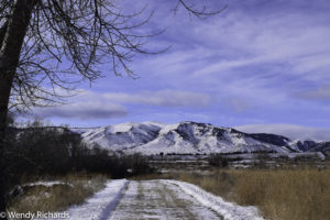 A path leading to the Big Horn mountain range.
