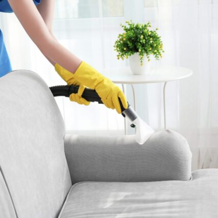 Upholstery Cleaning Whistler