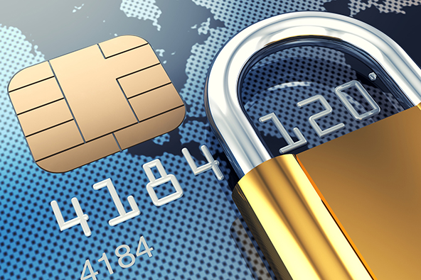 Screening Fraudulent E-Commerce Transactions