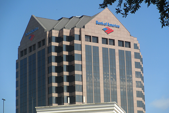 bank of america debit card fraud email