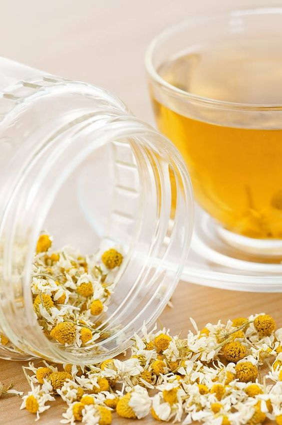 Chamomile herbal tea health benefits | Girlfriend is Better