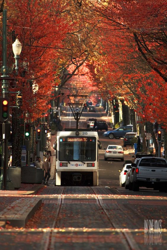 Portland Oregon travel guide | Girlfriend is Better