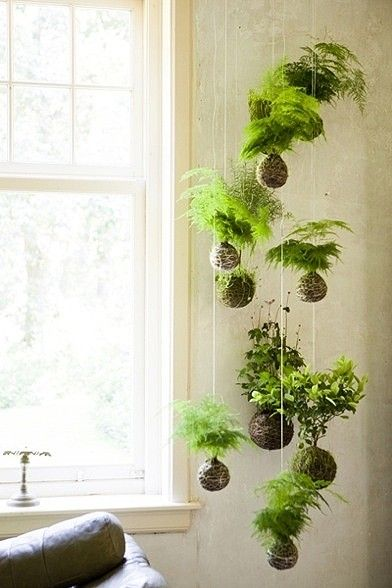 Hanging garden | Kokedama string garden | Girlfriend is Better