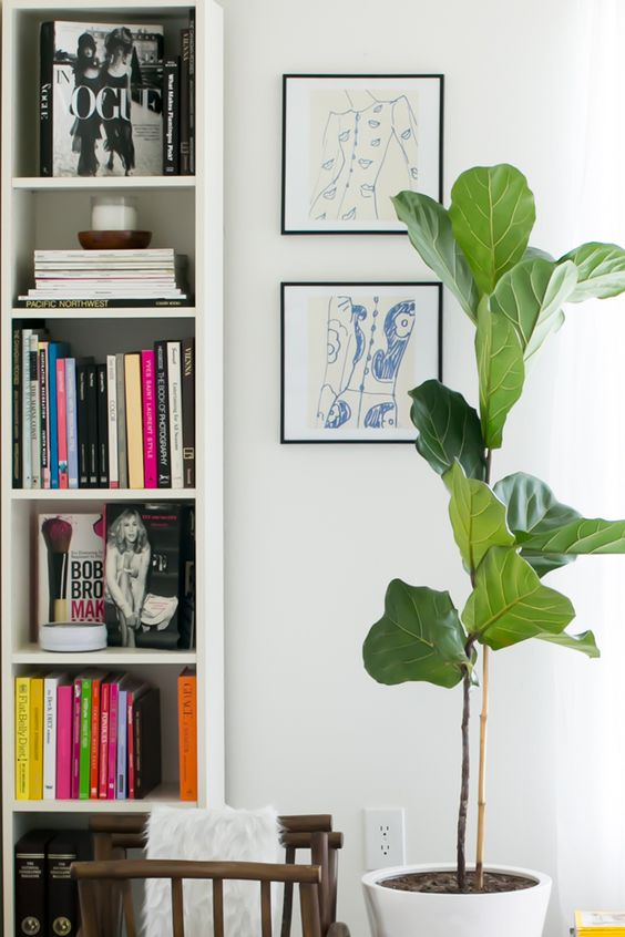 Keep items you love that enhance positive feelings | Feng Shui family decor | Girlfriend is Better