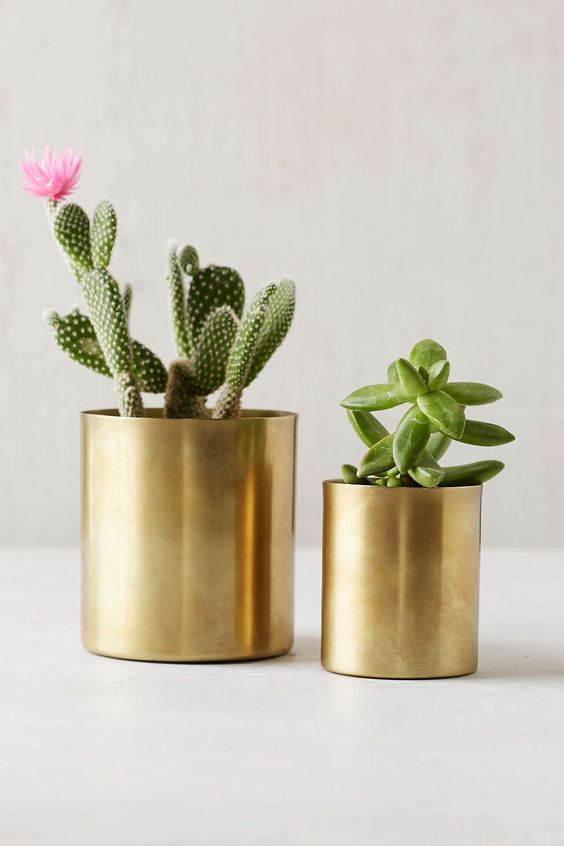 Gold planters and pots for succulents | Girlfriend is Better