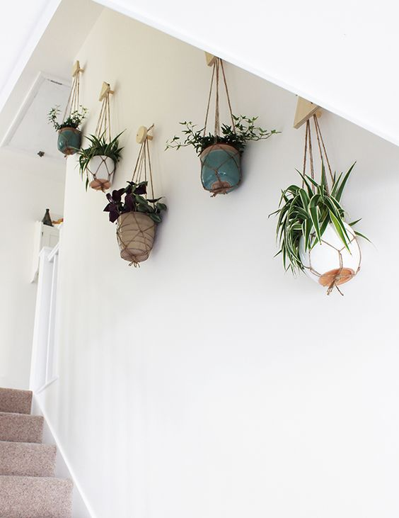 Use plants along a stairway or hall to slow energy | Feng Shui | Girlfriend is Better