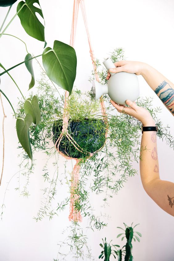Pisces astrology home decor   Macrame hanging plant water   Girlfriend is Better