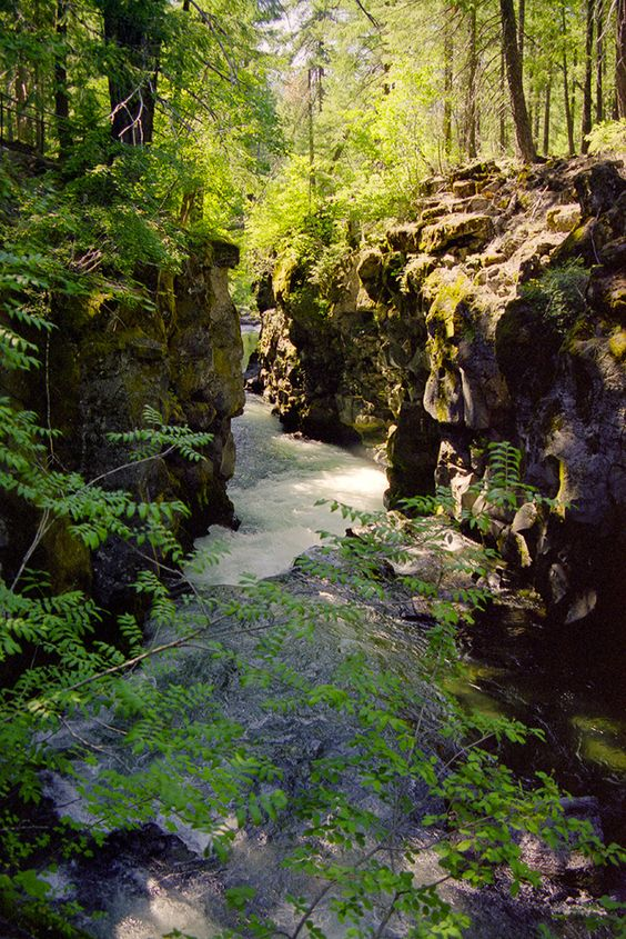 Union Creek Campground   Rogue River Oregon   Girlfriend is Better