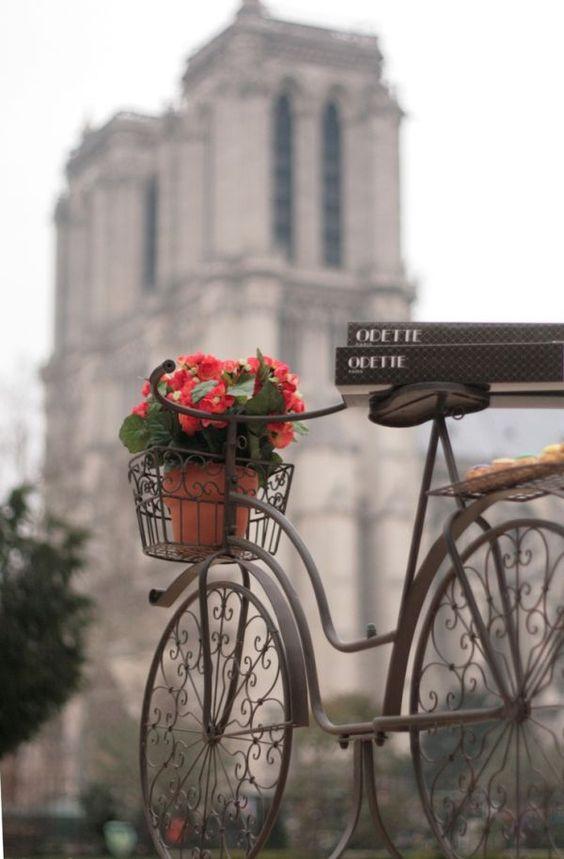 Paris Ground Zero   bike flowers Notre Dame cathedral   Girlfriend is Better