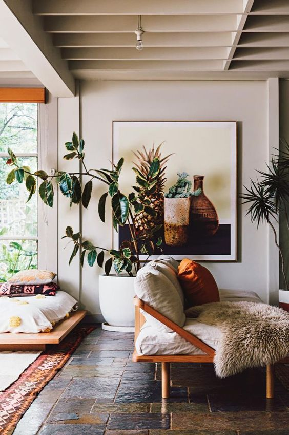 rubber plant | Bohemian tropical decor wood element | Girlfriend is Better
