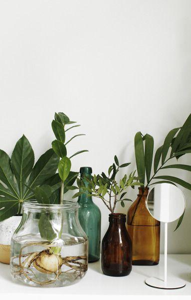 winter Hygge | plants amber glass vintage bottles | Girlfriend is Better