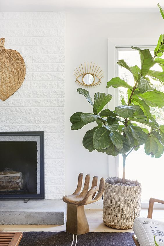 fiddle leaf figs | tall low maintenance plants Bohemian decor basket planter | Girlfriend is Better