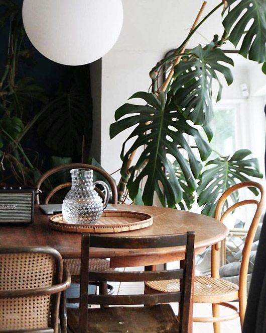 caned bentwood chairs | vintage dining room wood element | Girlfriend is Better