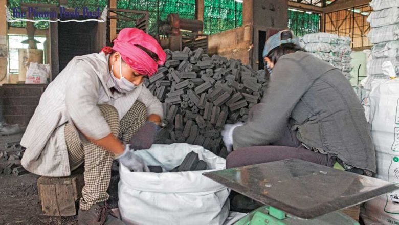 Cost of Cambodia's carbon credits must be raised: study finds