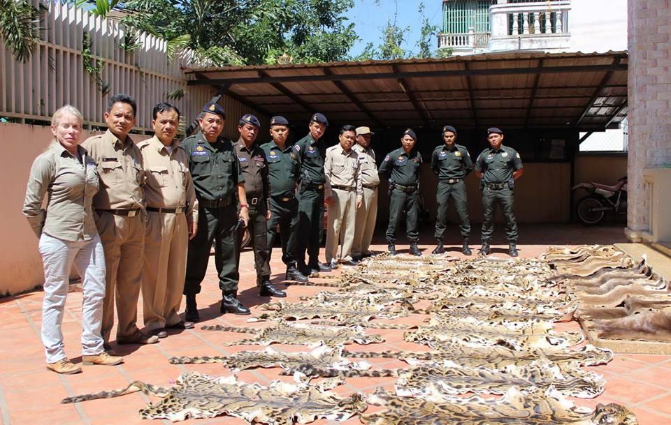 Combating Wildlife Trafficking