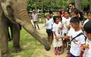 KE - PTWRC trip - Schoolchildren interacting with elephant
