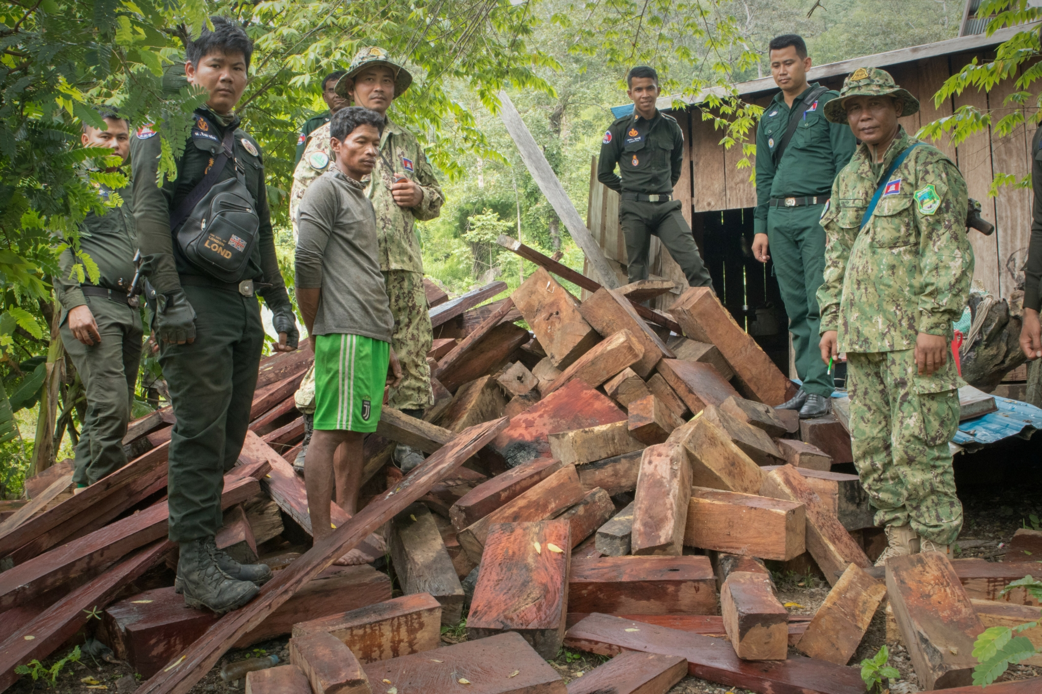 Luxury timber Dealer detained