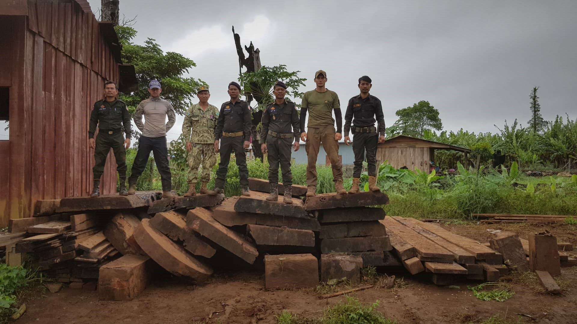 The 10 tonnes of Luxury Timber were seized during the raid