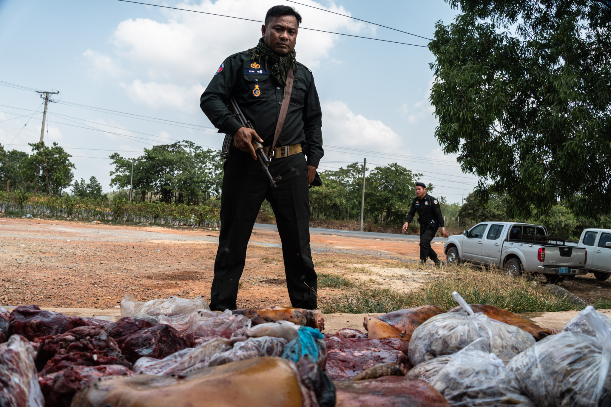 Huge quantities of wildlife meat seized