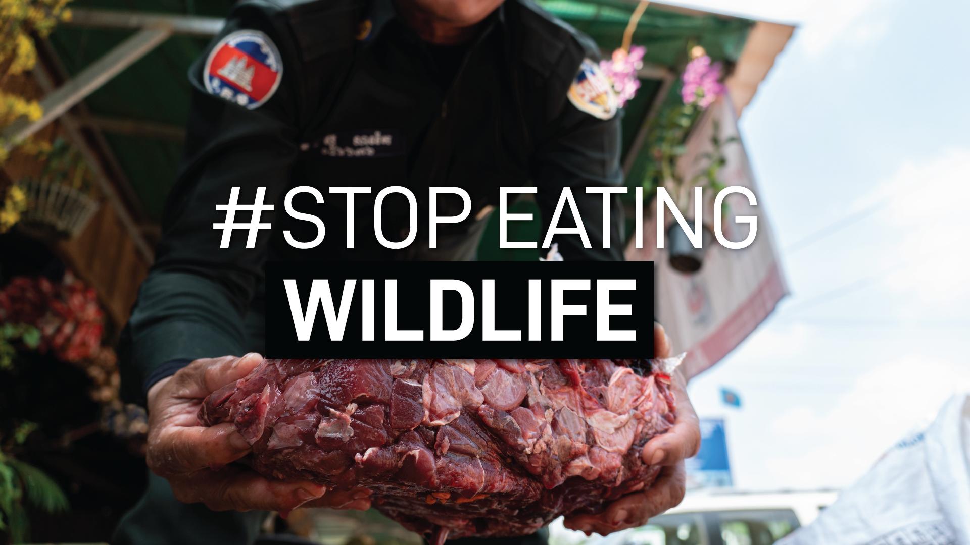 Wildlife Alliance launches #StopEatingWildlife campaign