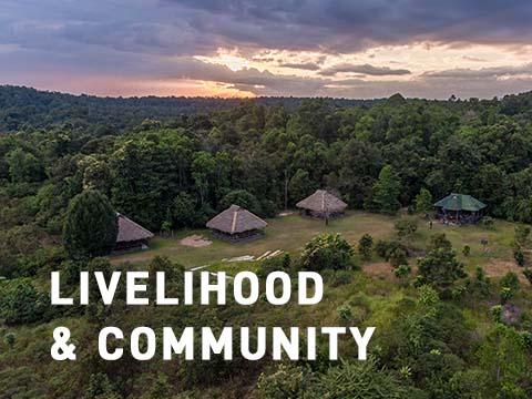 Livelihood and community mobile